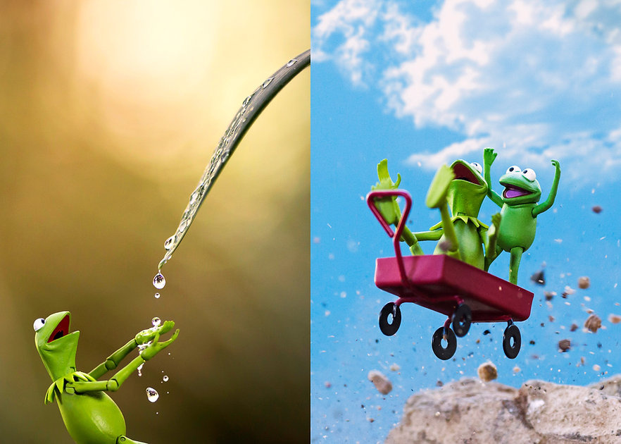 Kermit 2 Pic.jpg