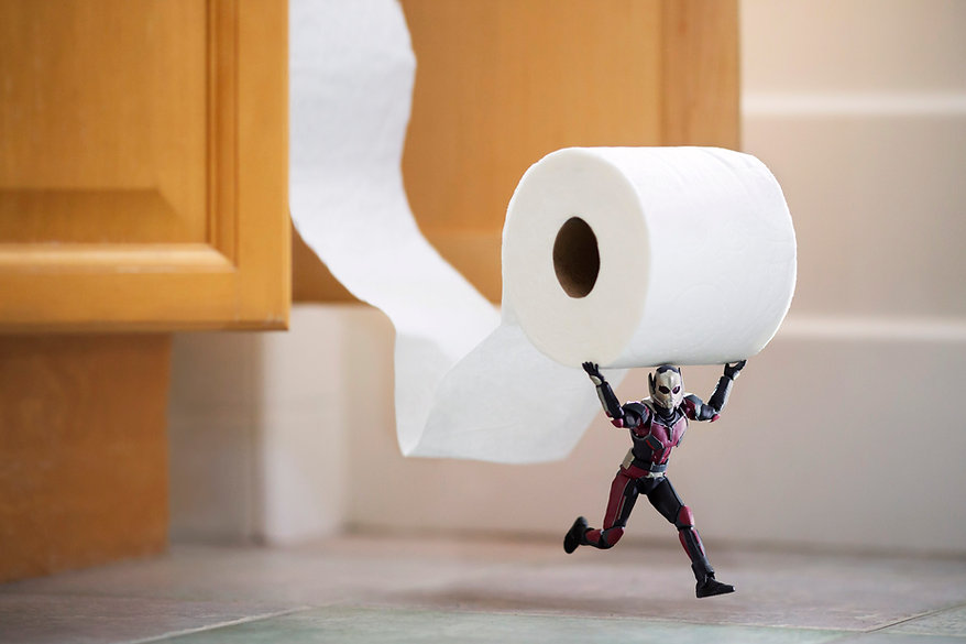 Antman Toilet Paper Theft 8x12.jpg