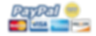 paypal-buy-now-button-png-4.png