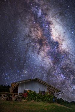 Dark Horse Nebula