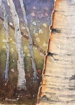 Summer Light Birch