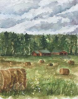 Fay Road Farm