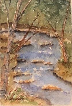 Lilties Series: Forest Stream