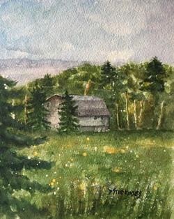 White Birch Barn