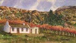 R253 Cottage