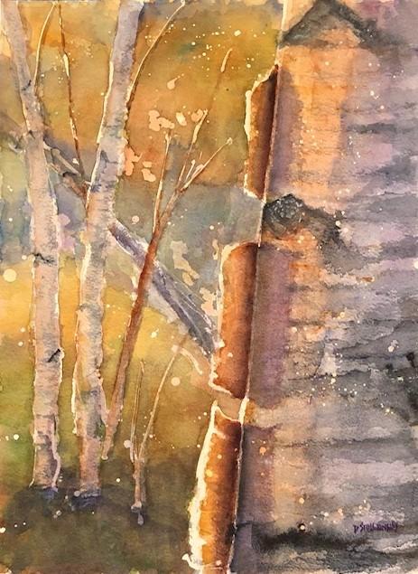 Birches in Sunlight