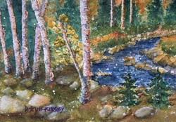 Woodland Color