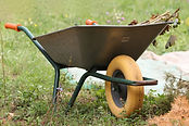 wheelbarrows-4474525_1920.jpg