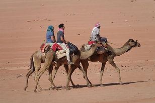 2018 Jordan Camels (44).JPG