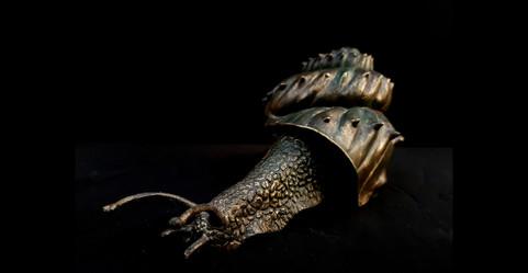 love snails single 3.jpg