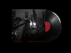 18-vinyl.png