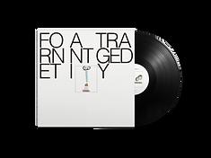 20-vinyl-fornet.png