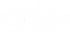 Second Sole Mentor Logo White.png