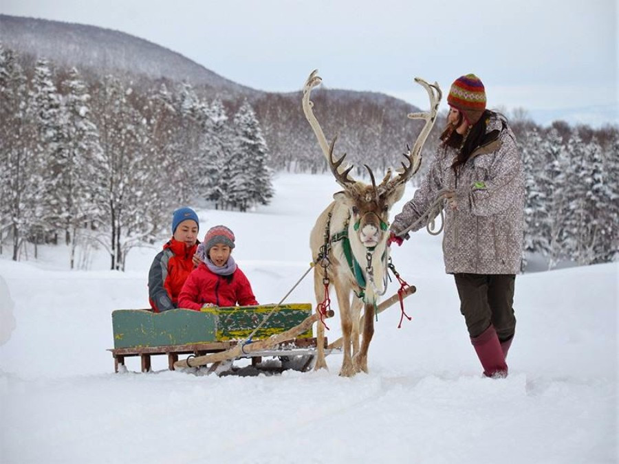 viaje travel lugares acogedores cozy places nieve snow snowfall diciembre trip traveler viajera