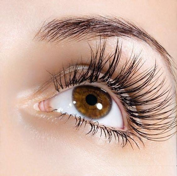 pestañas crecimiento eyelashes aceite aloe vera skin care cuidado de la piel belleza beauty aceites naturales gel de aloe vera savila remedios caseros