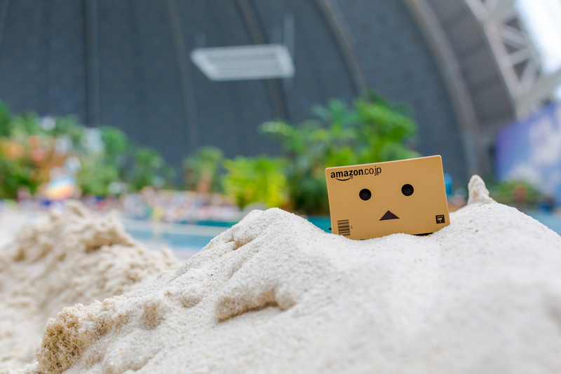 Danbo im Tropical Island