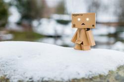 Zombie-Danbo im Schnee