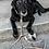 Thumbnail: Verstellbare Leine aus Seil - Beige mit grau