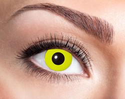 84063141.606 Yellow Crow Eye