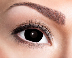 84092841.e07 Mini Sclera Black Eye