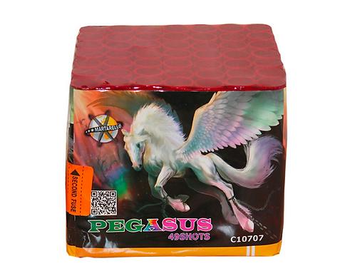 Pegasus6