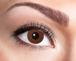 84063141.626 Brown Eye
