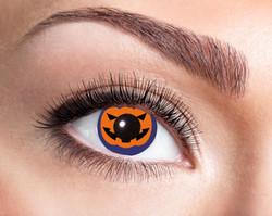 84080441.944 pumpkin