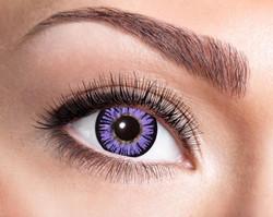 84091941.b06 Big Eye Purple