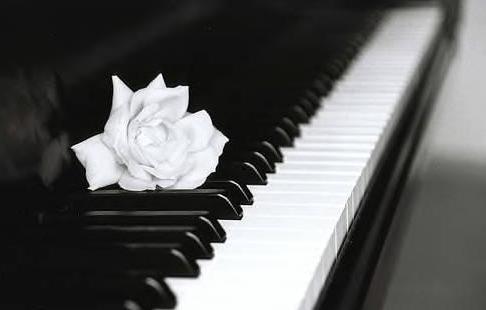 Pianist 钢琴演奏