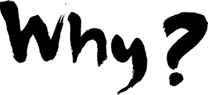 An image of the word WHY