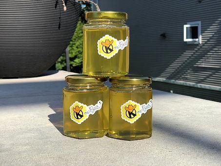 Honey 3.jpeg