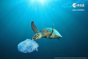 PlasticLess_Society2.jpg