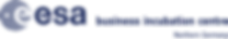 BIC_NG_D_Blue_oriz_WEB.png