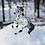 Thumbnail: Micro Rorschach