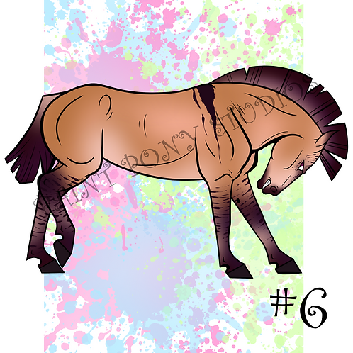 Mustang Adoptables - Bay Dun