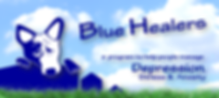 BlueHealers_400x180.png