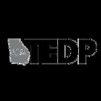 Georgia TEDP