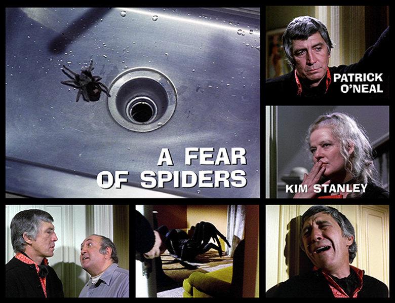 FearSpidersMarquee.jpg