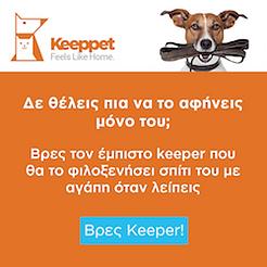 Μεταφορά σκύλου σε κτηνιάτρο