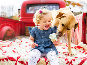 Μάθετε στο σκύλο σας να αγαπά τα παιδιά