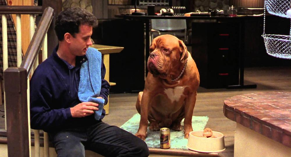 Τέρνερ και Χουτς Ταινία με σκύλο ντογκ ντε μπορντό i pet taxi blog