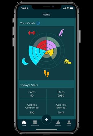 Dianavi App Home Page
