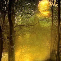 Магическое масло Солнца