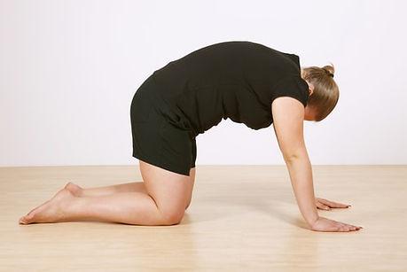 cow-pose-yoga-2.jpg