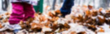 fall-2814904_1280-1.jpg