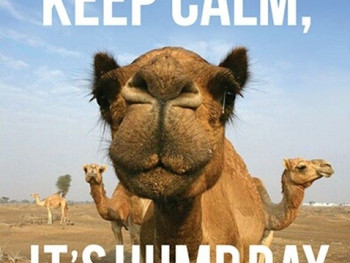 Trying to get over that hump??
