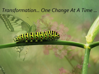 Transformation: One Change at a Time!