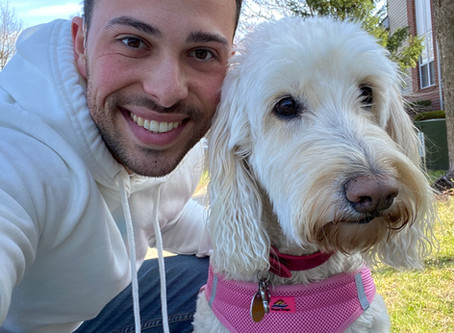 Separation anxiety with pets and COVID-19