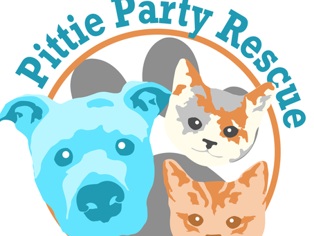 Pittie Party Rescue
