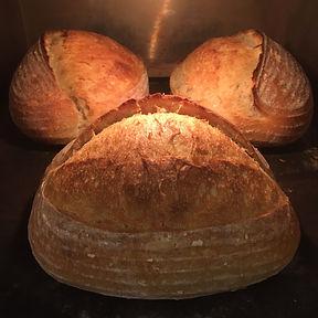 3 loaves pic.JPG